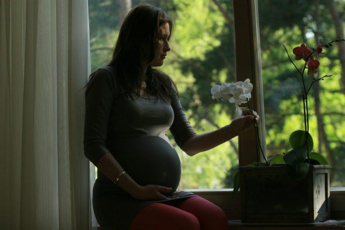 těhotná